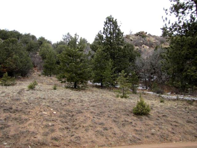 TBD Taylor Trail, Canon City, CO 81212 (#2542142) :: Jason Daniels & Associates at RE/MAX Millennium