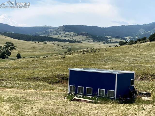 341 Mountain Meadows Trail, Canon City, CO 81212 (#2542492) :: Tommy Daly Home Team