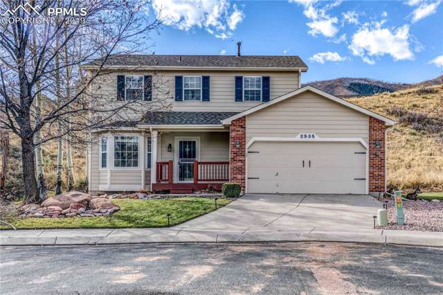 2535 Rick Court, Colorado Springs, CO 80919 (#2546234) :: Tommy Daly Home Team