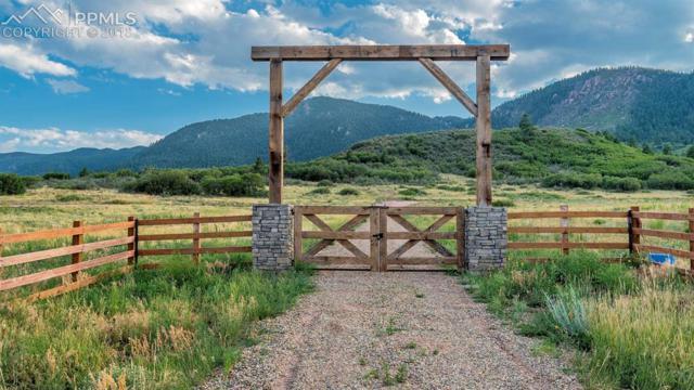 4175 Hay Creek Road, Colorado Springs, CO 80921 (#2548078) :: Fisk Team, RE/MAX Properties, Inc.