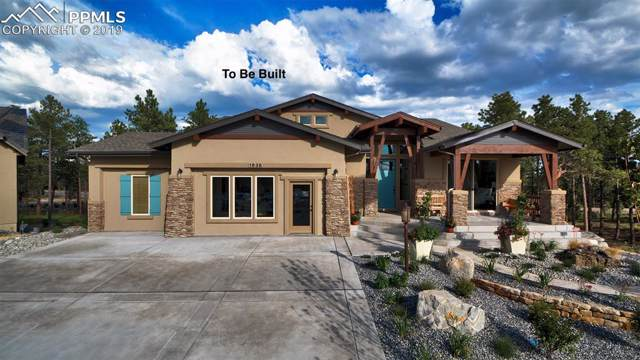 14161 Stone Eagle Place, Colorado Springs, CO 80921 (#2551674) :: The Daniels Team