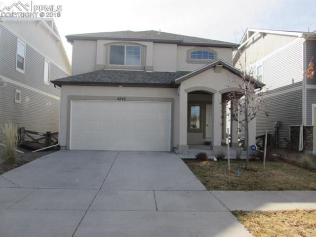 8245 Cypress Wood Drive, Colorado Springs, CO 80927 (#2552792) :: The Peak Properties Group