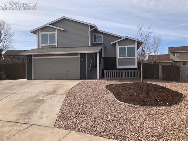 943 Pond Side Drive, Colorado Springs, CO 80911 (#2555640) :: Venterra Real Estate LLC