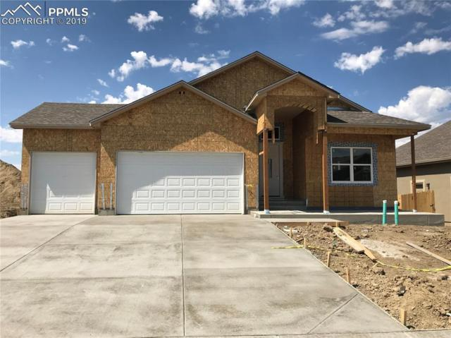 7106 Peachleaf Drive, Colorado Springs, CO 80925 (#2560037) :: Action Team Realty