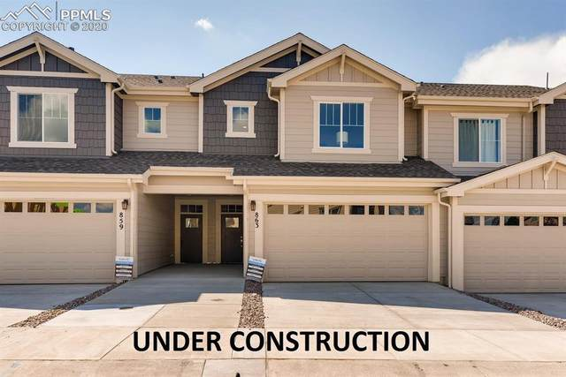 15619 Kitchener Way, Monument, CO 80132 (#2560110) :: Tommy Daly Home Team