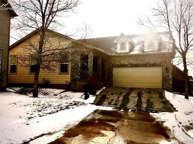 11881 Trissino Heights, Falcon, CO 80831 (#2561572) :: Venterra Real Estate LLC