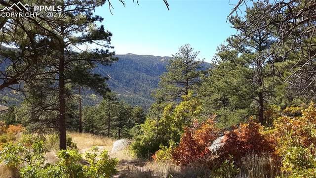 8210 Bear Dance Heights, Cascade, CO 80809 (#2563701) :: Action Team Realty