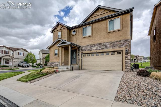 4732 Falcons Hood Point, Colorado Springs, CO 80922 (#2564615) :: Fisk Team, RE/MAX Properties, Inc.