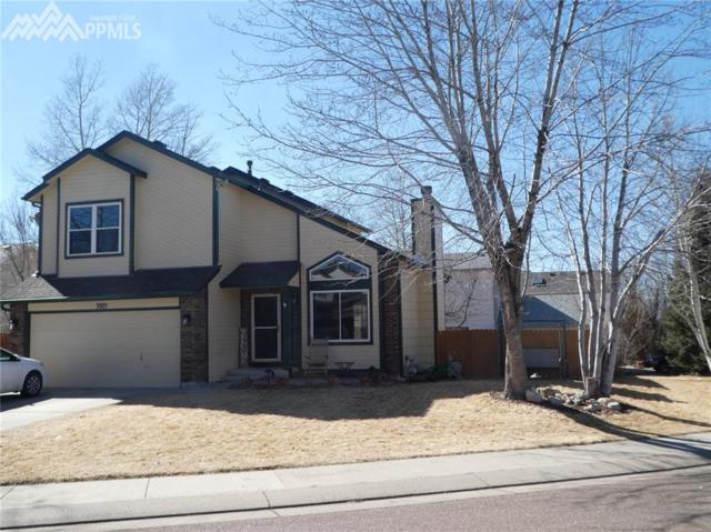 3375 Richmond Drive, Colorado Springs, CO 80922 (#2565949) :: RE/MAX Advantage