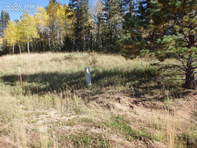 126 Bear Claw Trail, Divide, CO 80814 (#2571323) :: 8z Real Estate