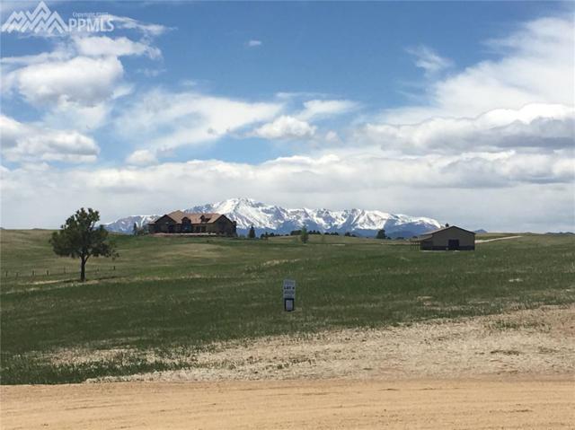 5450 Haes Haven View, Colorado Springs, CO 80908 (#2575237) :: 8z Real Estate