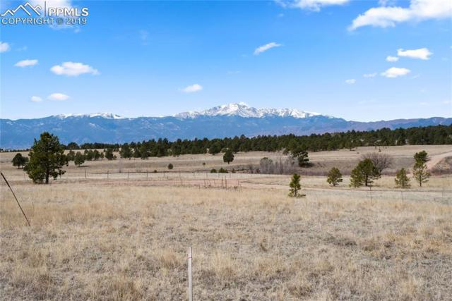 9010 Nature Refuge Way, Colorado Springs, CO 80908 (#2575730) :: Perfect Properties powered by HomeTrackR