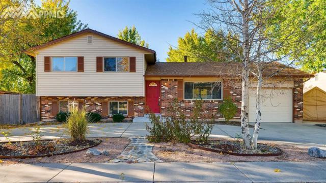 1015 Gilfin Circle, Colorado Springs, CO 80915 (#2575762) :: 8z Real Estate
