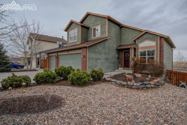 3911 Roan Drive, Colorado Springs, CO 80922 (#2575937) :: The Treasure Davis Team