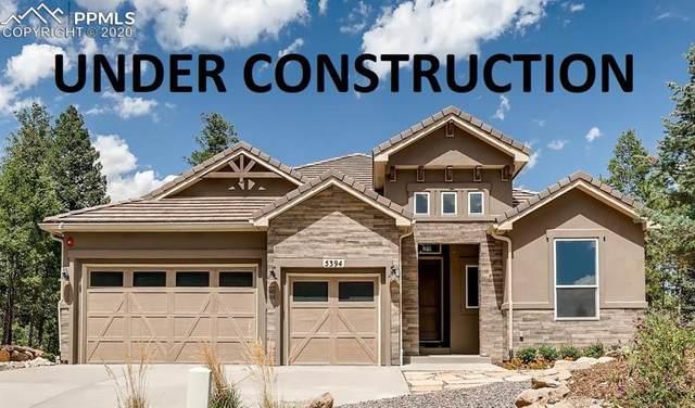 5345 Old Star Ranch View, Colorado Springs, CO 80906 (#2576148) :: The Kibler Group