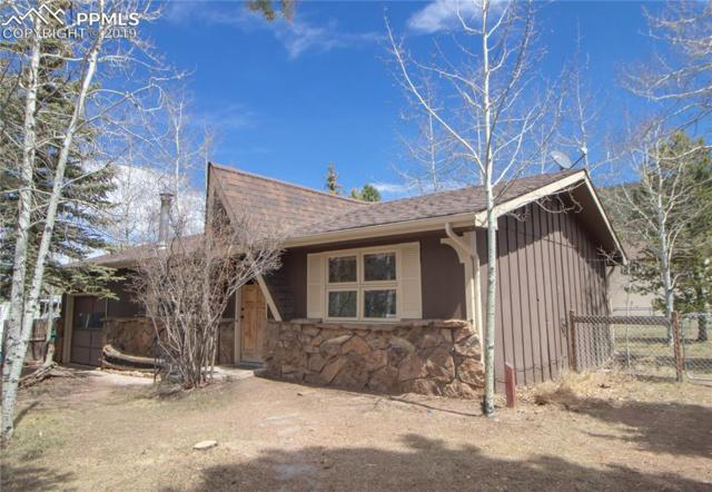 813 N Park Drive, Woodland Park, CO 80863 (#2580171) :: Tommy Daly Home Team