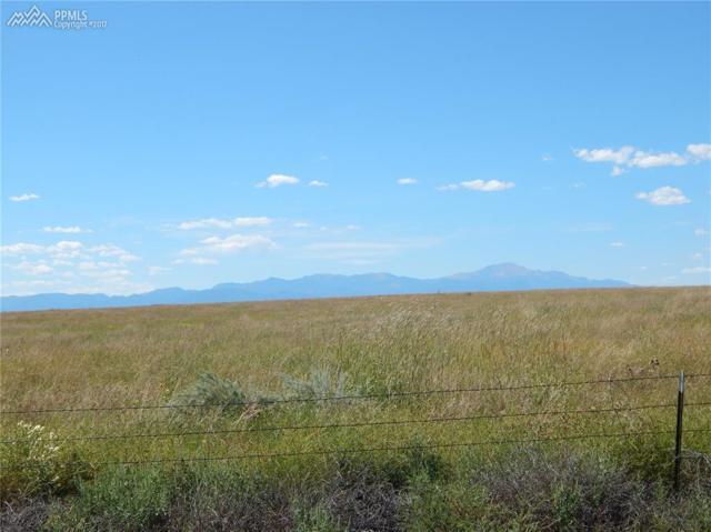 22005 Drennan Road, Colorado Springs, CO 80928 (#2581126) :: 8z Real Estate