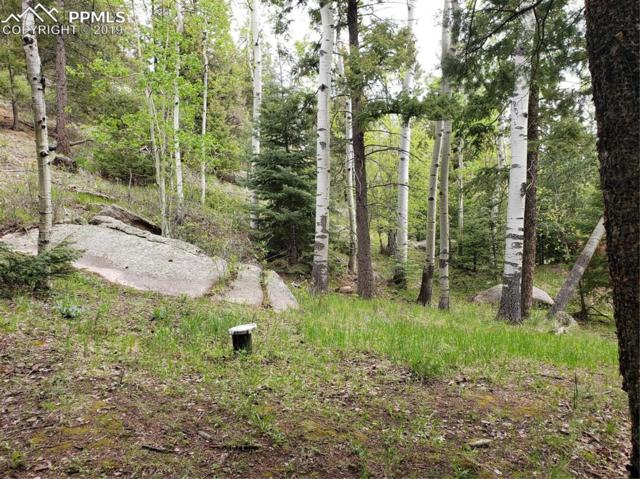 75 Waterfall Trail, Manitou Springs, CO 80829 (#2581257) :: The Treasure Davis Team