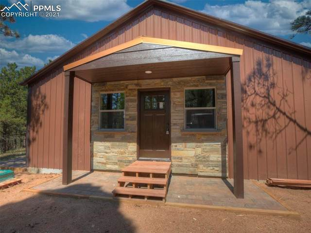 291 Wasatch Lane, Florissant, CO 80816 (#2585544) :: Tommy Daly Home Team
