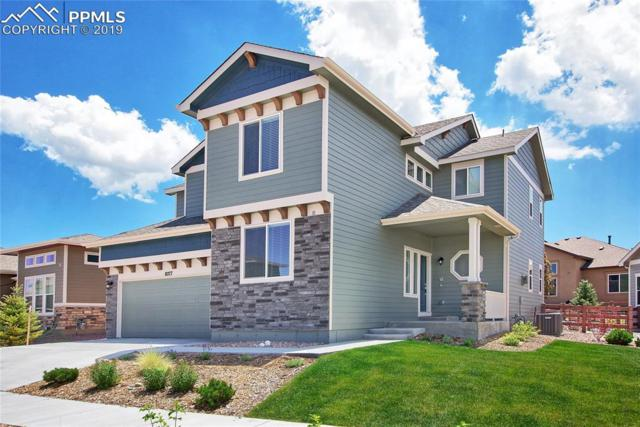 8277 Misty Moon Drive, Colorado Springs, CO 80924 (#2592076) :: The Daniels Team