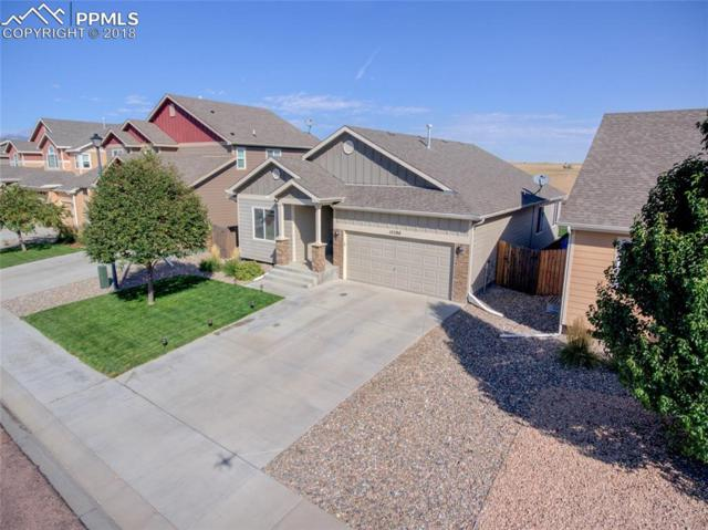 10286 Silver Stirrup Drive, Colorado Springs, CO 80925 (#2592397) :: The Kibler Group