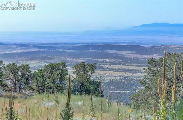 15770 Ridge Ride Point, Colorado Springs, CO 80926 (#2593086) :: 8z Real Estate