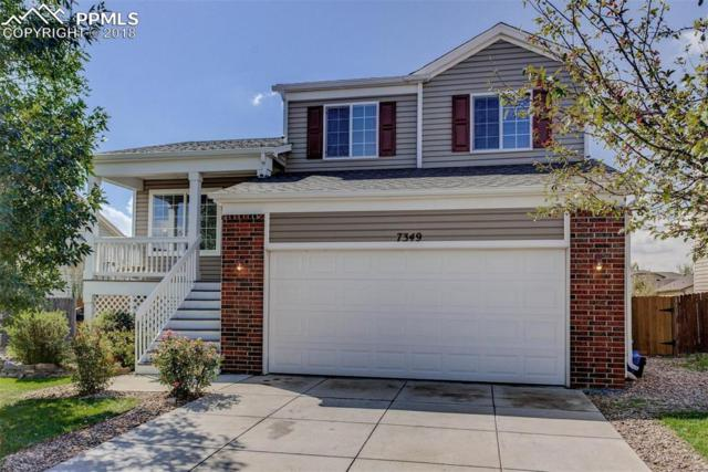 7349 Glenburn Drive, Fountain, CO 80817 (#2593337) :: 8z Real Estate