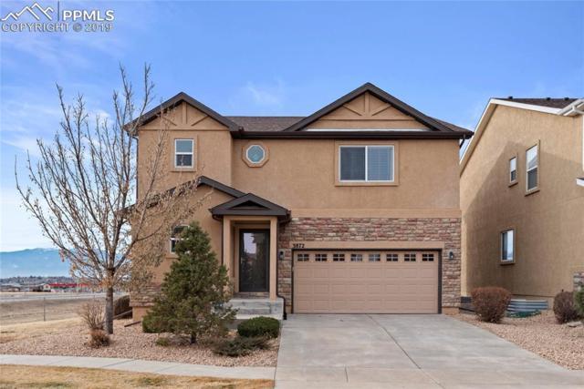3872 Swainson Drive, Colorado Springs, CO 80922 (#2593950) :: Relevate Homes | Colorado Springs