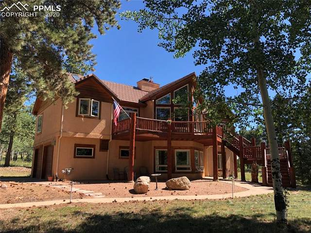 105 Bald Eagle View, Divide, CO 80814 (#2598762) :: 8z Real Estate