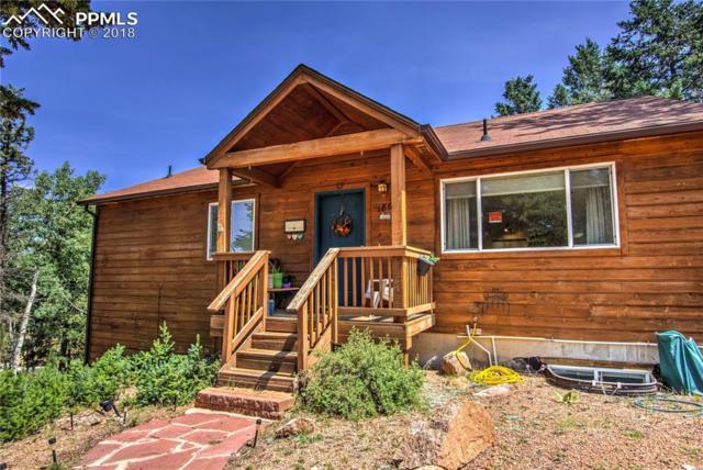 186 Grizzly Peak Drive, Florissant, CO 80816 (#2602092) :: Venterra Real Estate LLC