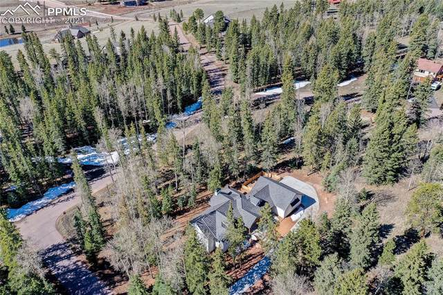 102 Bald Eagle View, Divide, CO 80814 (#2607200) :: The Artisan Group at Keller Williams Premier Realty