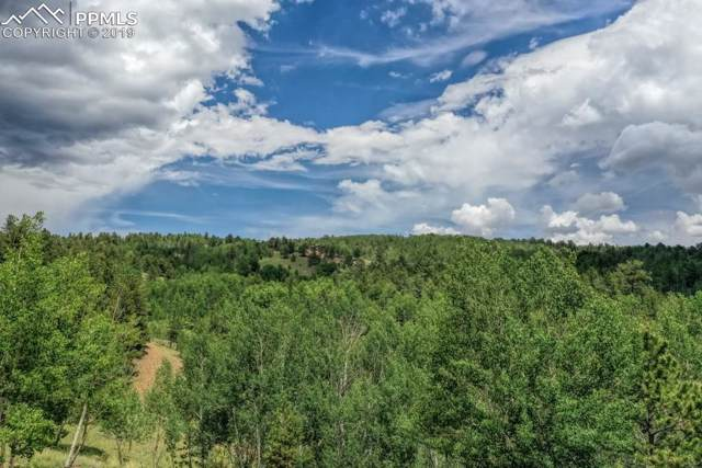 1087 Princess Road, Cripple Creek, CO 80813 (#2608276) :: The Treasure Davis Team