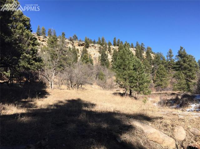 0 Deer Trail, Rye, CO 81069 (#2608794) :: Action Team Realty