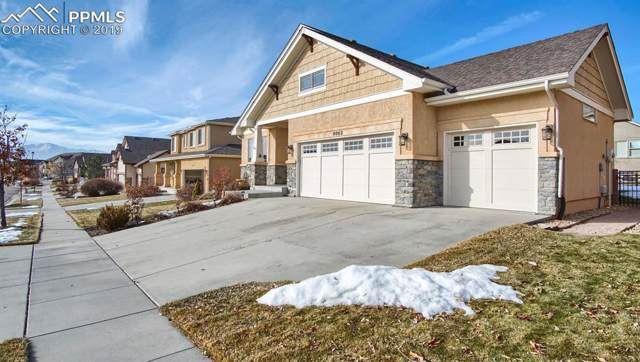 8862 Stony Creek Drive, Colorado Springs, CO 80924 (#2614009) :: Tommy Daly Home Team
