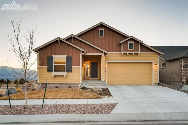 10636 Echo Canyon Drive, Colorado Springs, CO 80908 (#2618022) :: Action Team Realty