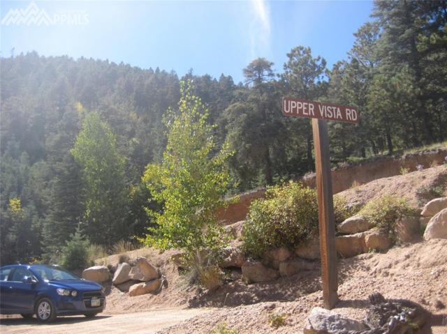 338 Upper Vista Road, Manitou Springs, CO 80829 (#2620959) :: Action Team Realty