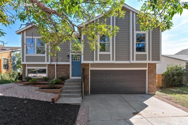4035 Vicksburg Terrace, Colorado Springs, CO 80917 (#2622228) :: The Peak Properties Group