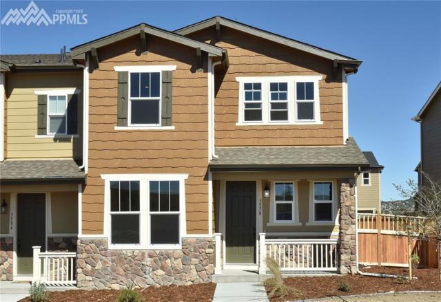 3578 Fennel Street, Castle Rock, CO 80109 (#2631974) :: 8z Real Estate