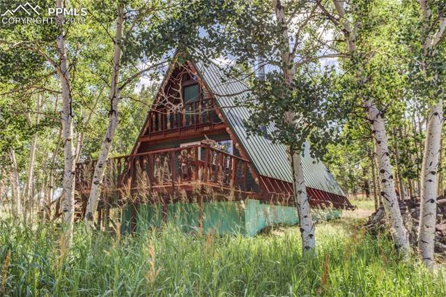 212 Maid Marian Drive, Divide, CO 80814 (#2632152) :: The Kibler Group