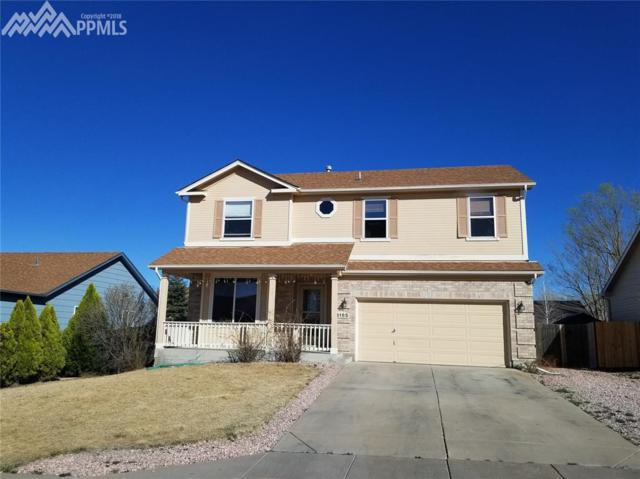 4165 Daylilly Drive, Colorado Springs, CO 80916 (#2636591) :: 8z Real Estate