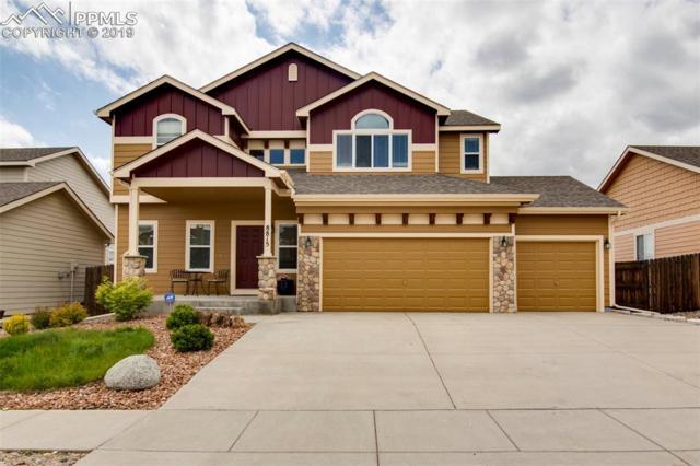 8815 Canary Circle, Colorado Springs, CO 80908 (#2644058) :: The Treasure Davis Team