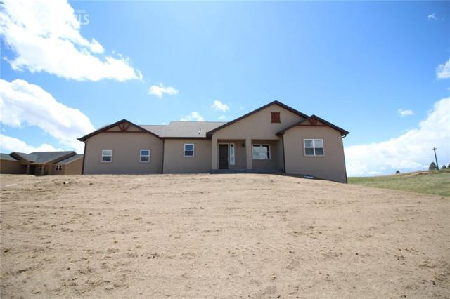 16984 Fletcherville Lane, Peyton, CO 80831 (#2648394) :: 8z Real Estate