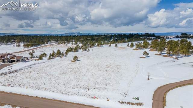 18812 Cherry Springs Ranch Drive, Monument, CO 80132 (#2653227) :: The Gold Medal Team with RE/MAX Properties, Inc