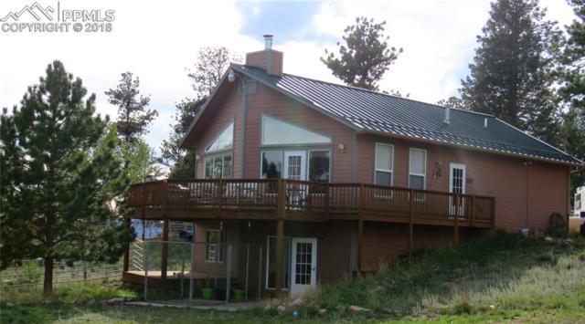 55 Crystal Peak Drive, Lake George, CO 80827 (#2656281) :: Action Team Realty