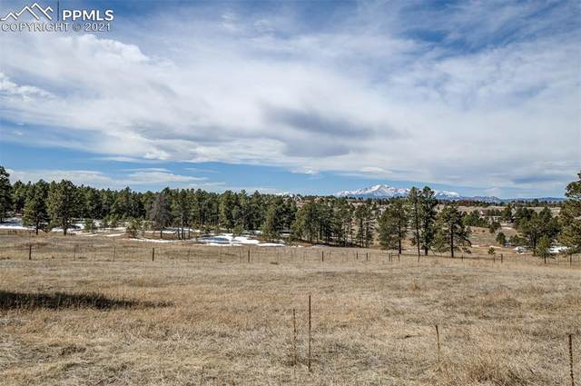 0 Walker Road, Colorado Springs, CO 80908 (#2658827) :: Tommy Daly Home Team