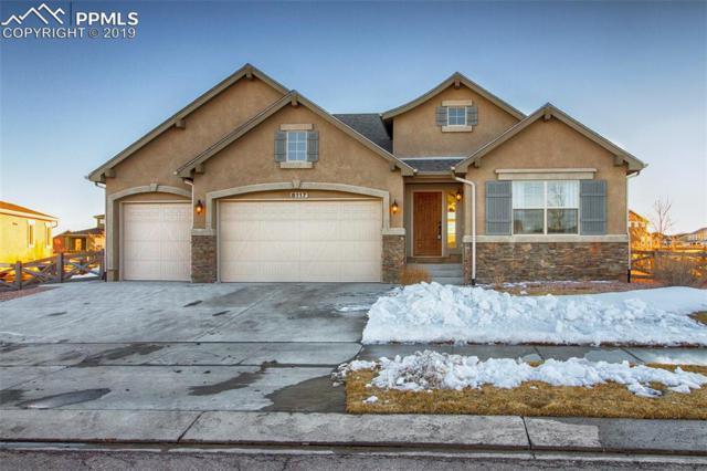 8117 Foxtail Pine Place, Colorado Springs, CO 80927 (#2658897) :: Colorado Home Finder Realty