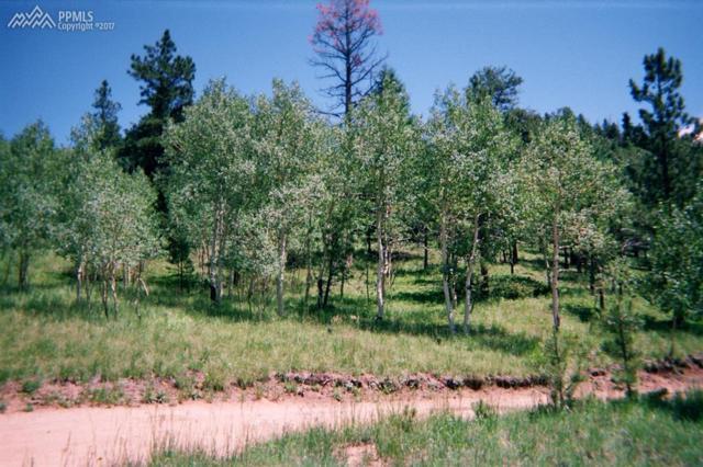 Eagle Mountain Road, Manitou Springs, CO 80829 (#2662888) :: The Treasure Davis Team