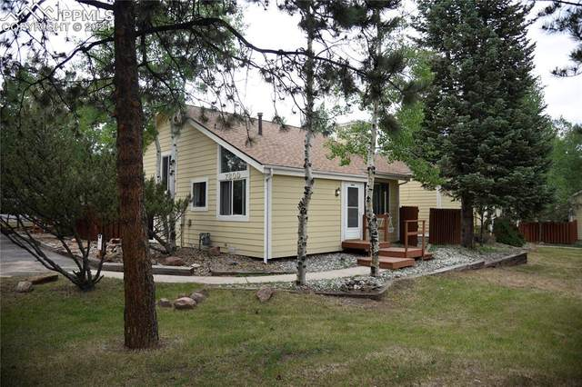 780 Columbine Village Drive D, Woodland Park, CO 80863 (#2666150) :: Fisk Team, eXp Realty
