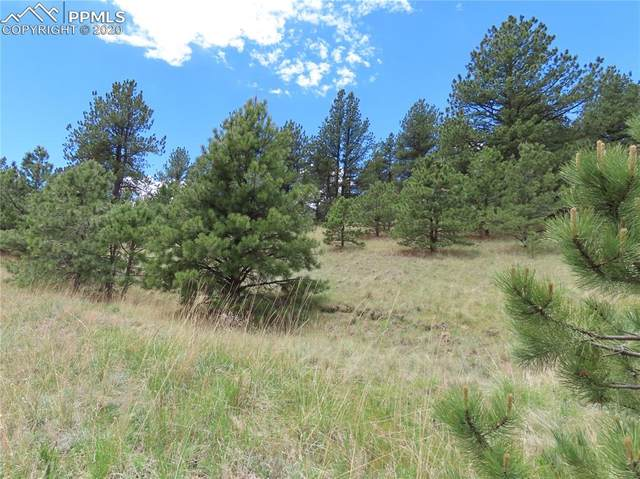 TBD Conestoga Creek Road, Florissant, CO 80816 (#2668581) :: CC Signature Group