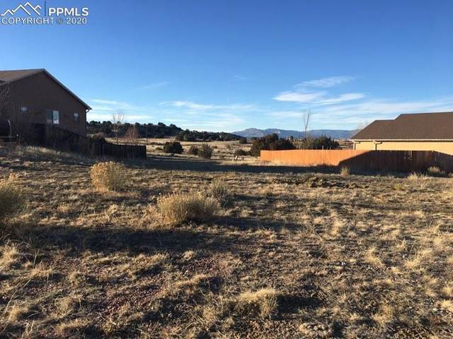 142 High Meadows Drive, Florence, CO 81226 (#2669514) :: The Kibler Group